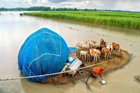 বন্যার আশঙ্কা করে বাংলাদেশকে সতর্ক বার্তা পাঠালো দিল্লি