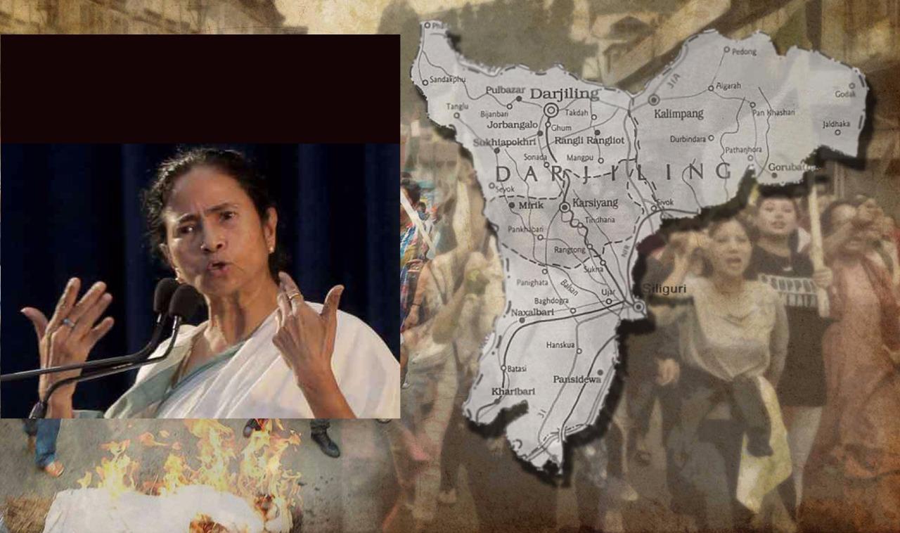 ১০০ আসনও পাবে না বিজেপি : মমতা
