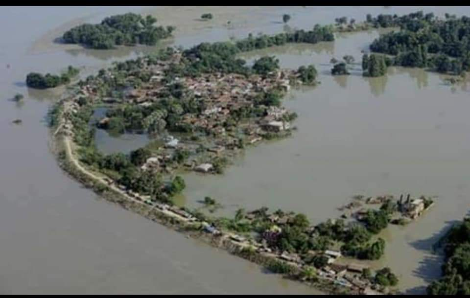 Flood In Bihar And Assam Leaves huge Damage In Its Wake