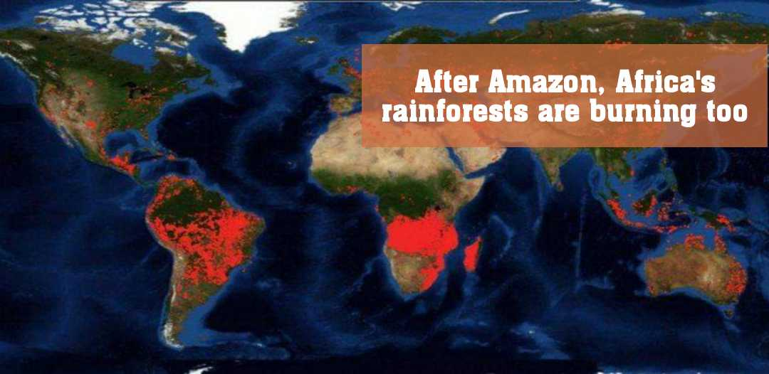 অ্যামাজনের পর আফ্রিকার কঙ্গো অববাহিকাও দাবানলের গ্রাসে