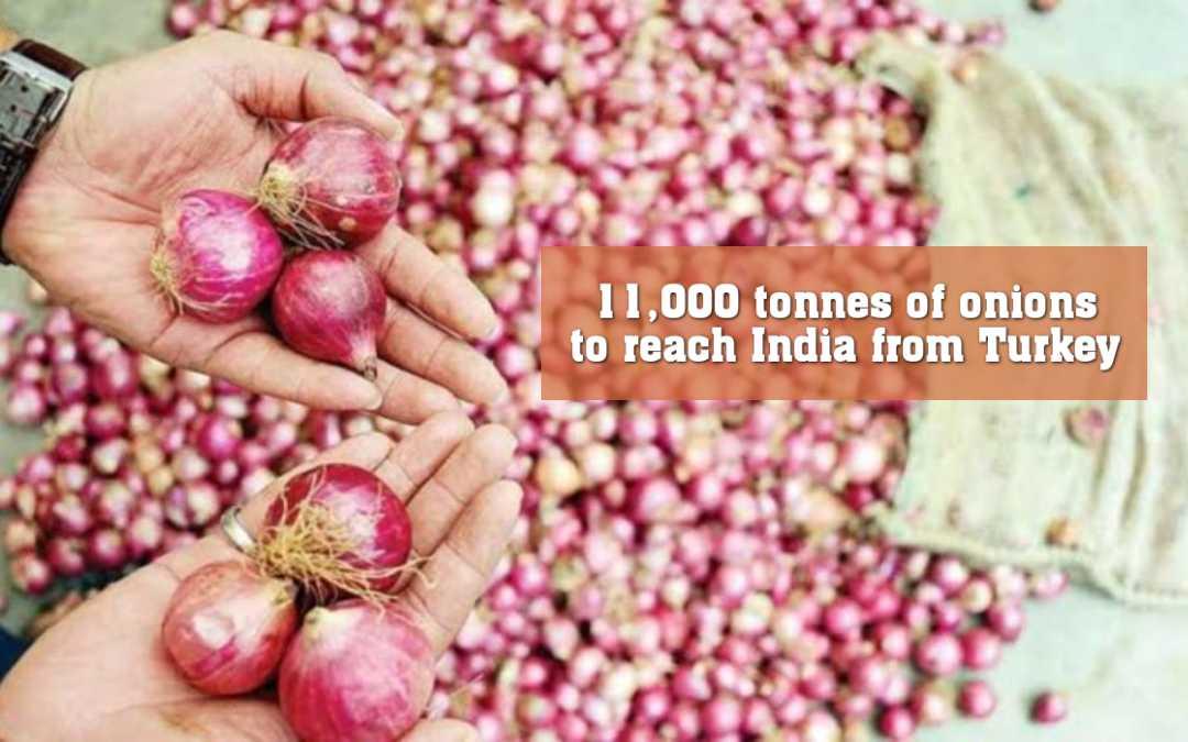 ১১,০০০ টন পেঁয়াজ তুর্কি থেকে আসবে ভারতে