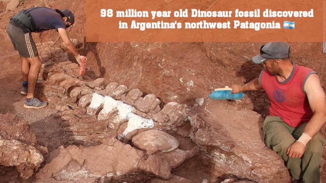 ৯৮ মিলিয়ন বছরের পুরানো ডাইনোসরের জীবাশ্ম আবিষ্কার