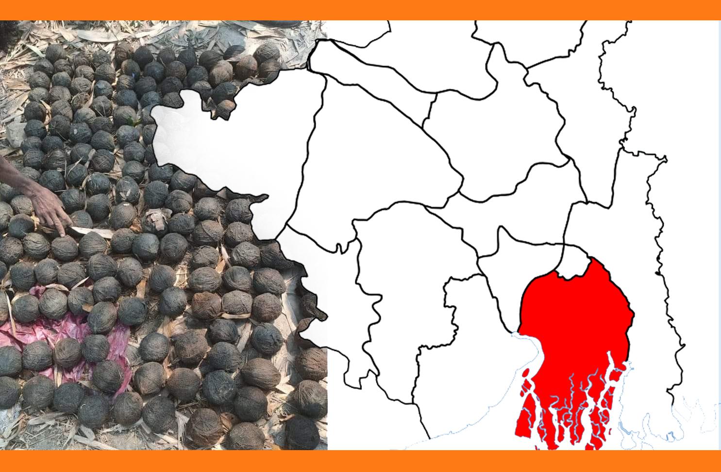২০০টি বোমা মিললো ভাঙর থেকে, এলাকাজুড়ে চাঞ্চল্য